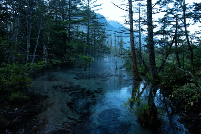 静寂に包まれる岳沢湿原の朝霧の写真