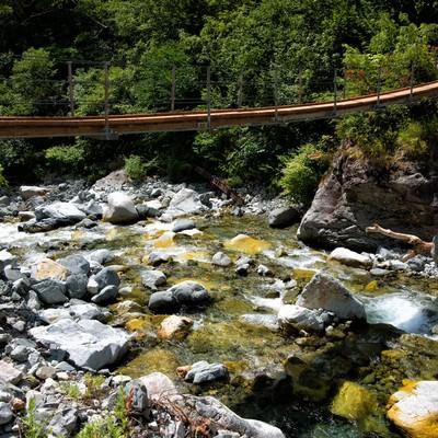 本谷にあるつり橋と川の流れの写真