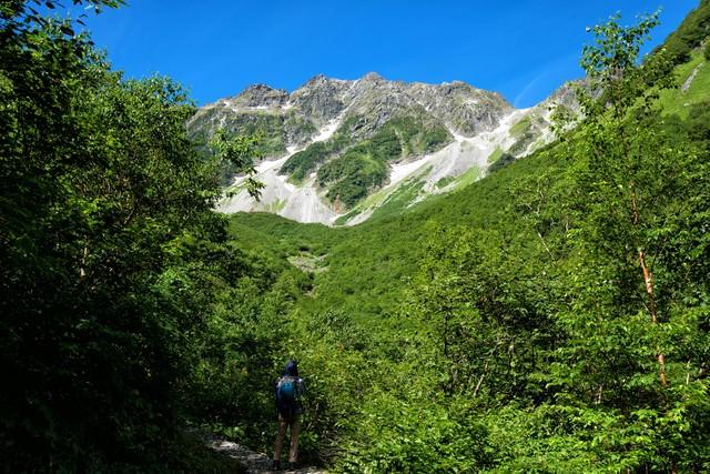 新緑の涸沢カールを見上げる登山者の写真