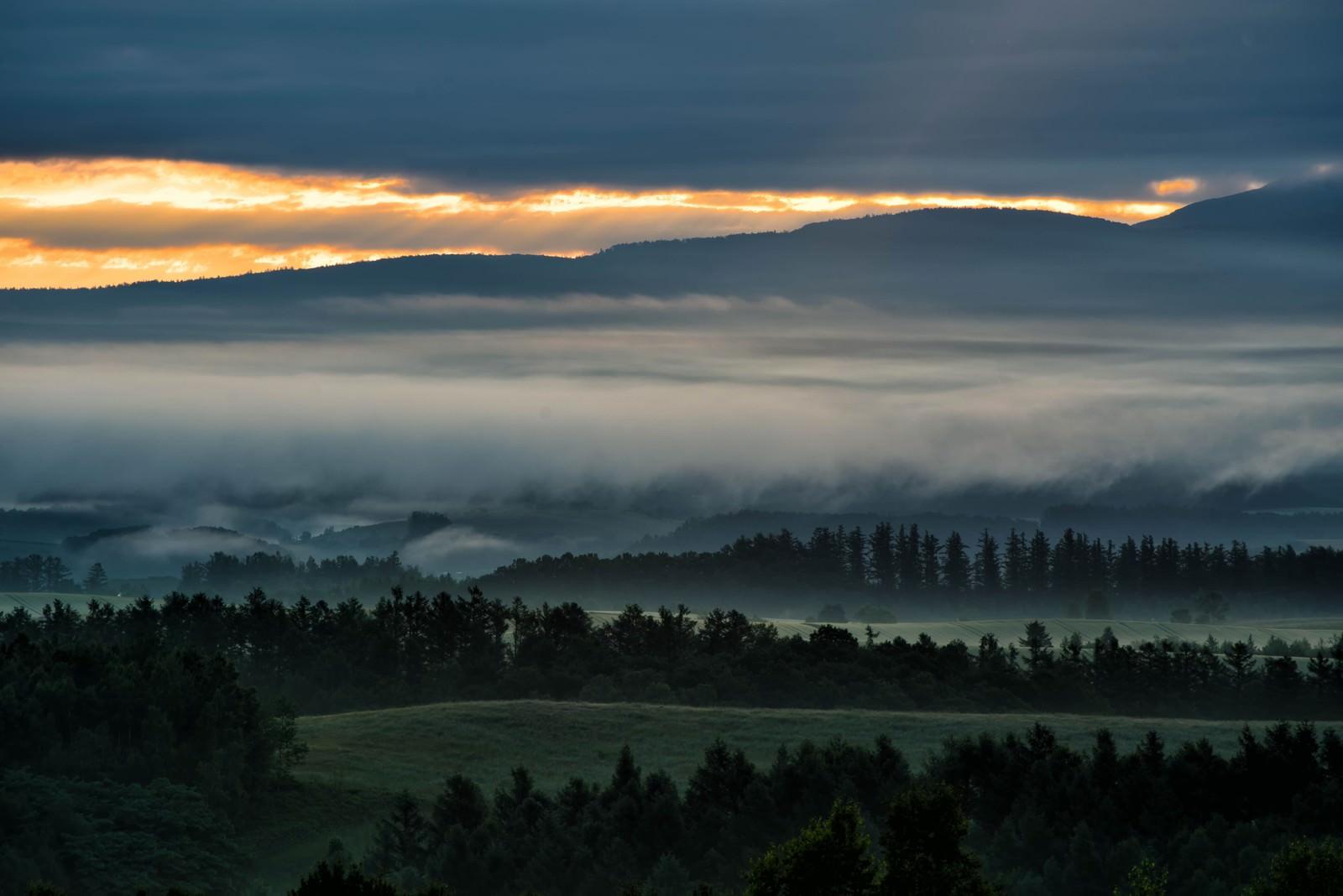 「朝霧に包まれる美瑛町の朝焼け」の写真