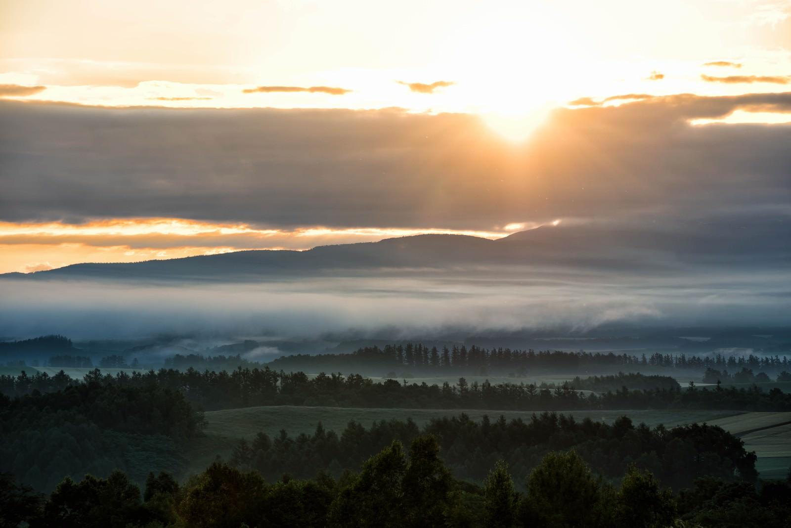 「朝霧立ちこむ美瑛町に差し込む朝日」の写真