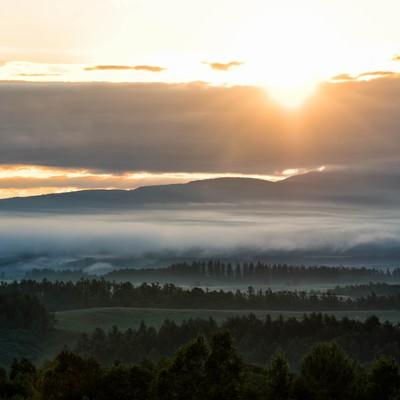 朝霧立ちこむ美瑛町に差し込む朝日の写真