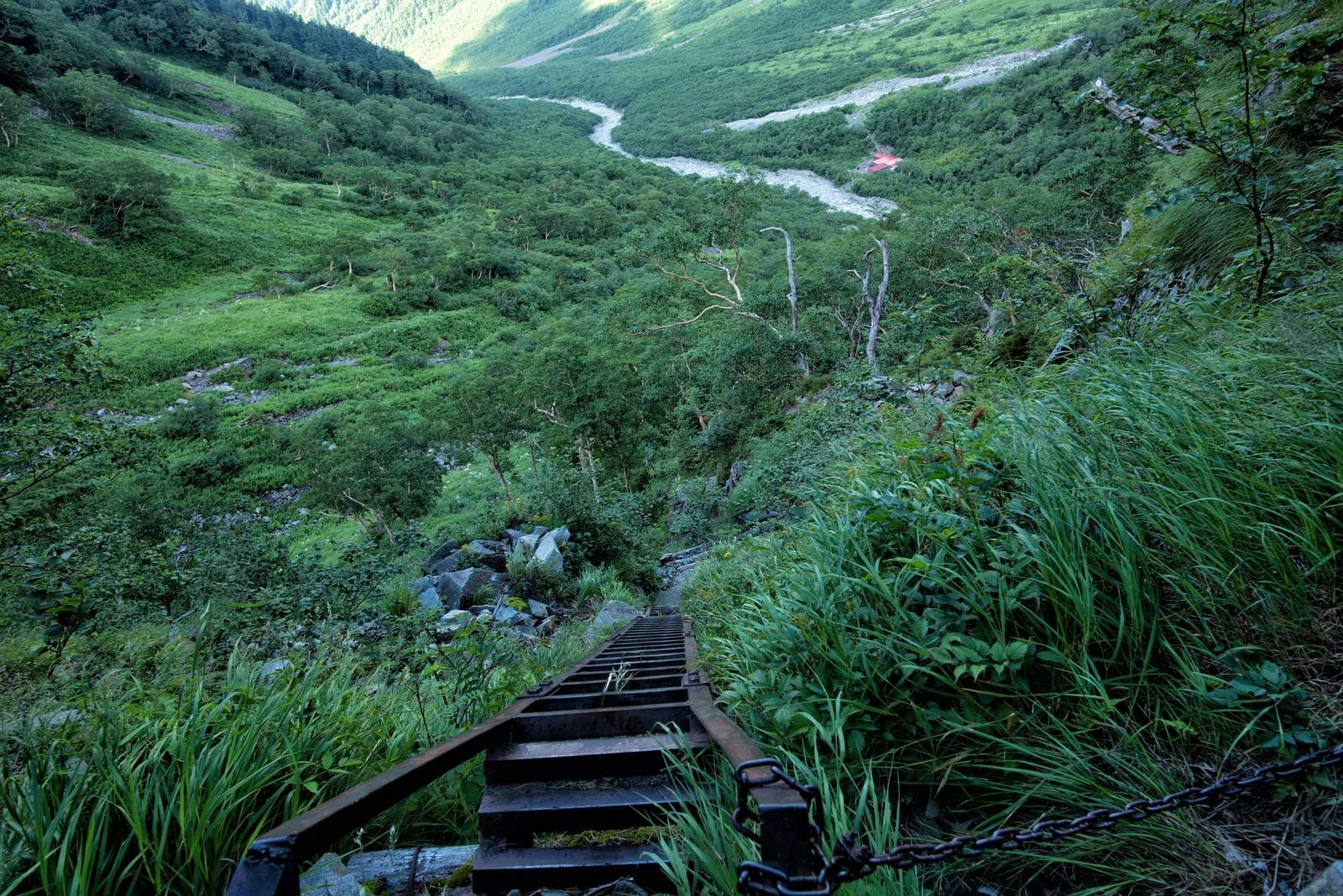 「重太郎新道の梯子場から続く登山道」の写真