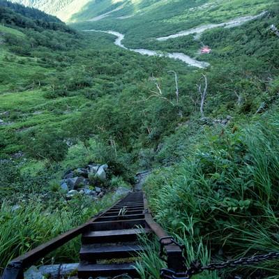 重太郎新道の梯子場から続く登山道の写真
