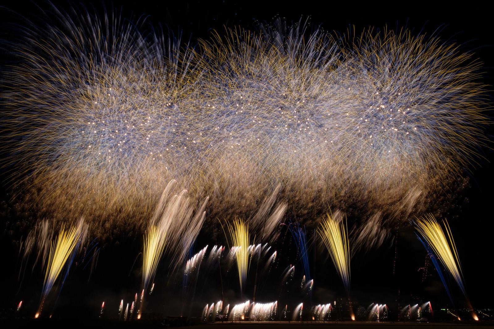 「炸裂する打上花火」の写真