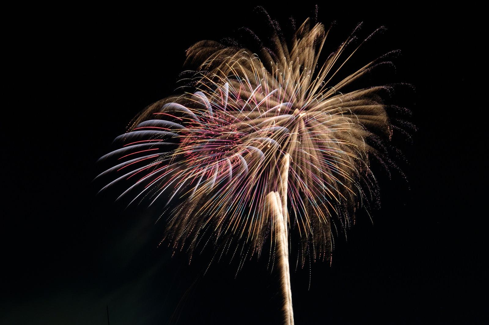 「夜空と打上花火」の写真