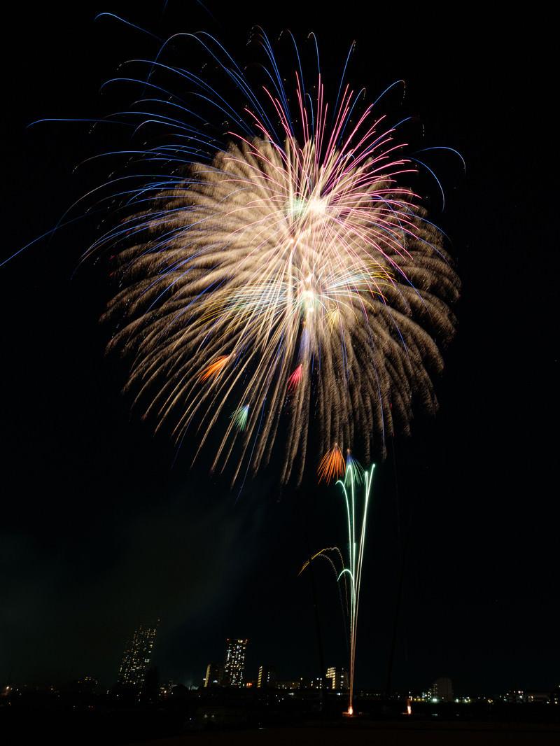 「夜空に打ち上がる花火」の写真