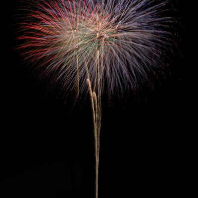 夜空に高く打ち上げる大玉花火の写真