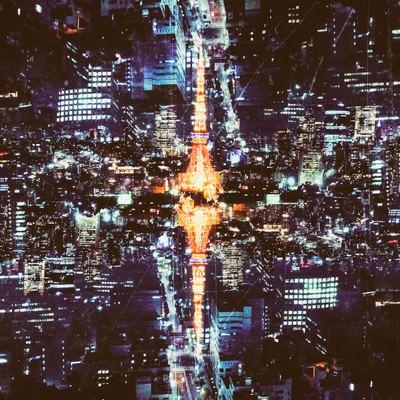 反射する東京のシンボル(夜景)の写真