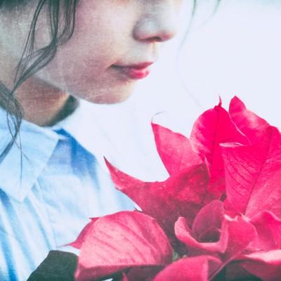 赤いポインセチアと女性の写真