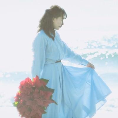 海辺と赤いポインセチアと女性の写真