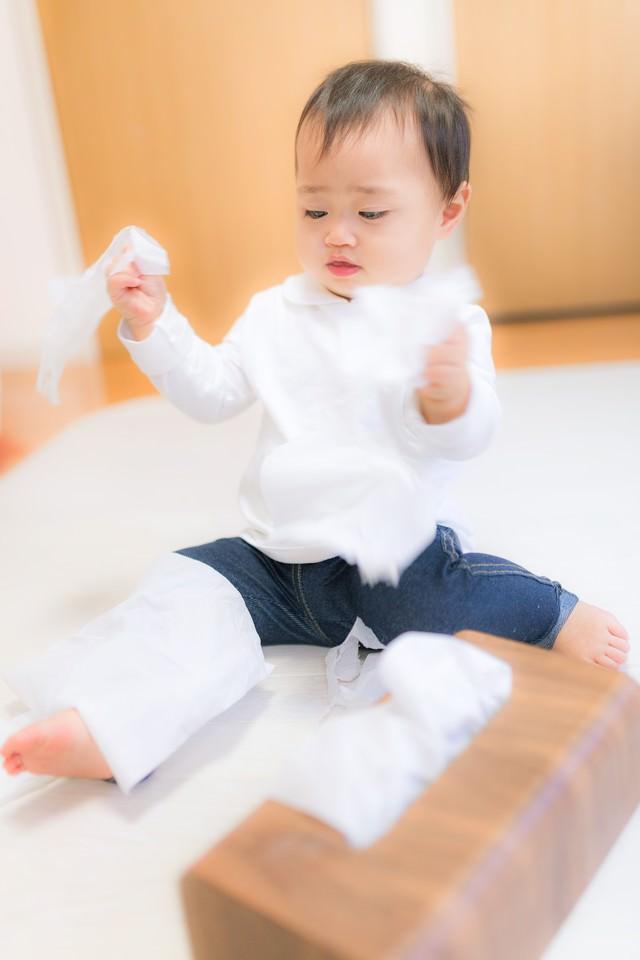 ティッシュを延々とひっぱり続ける赤ちゃんの写真