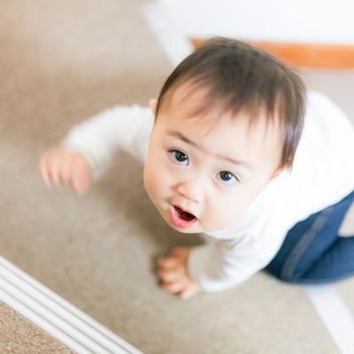 「いつの間にかハイハイで階段をのぼれるようになった赤ちゃん」の写真素材