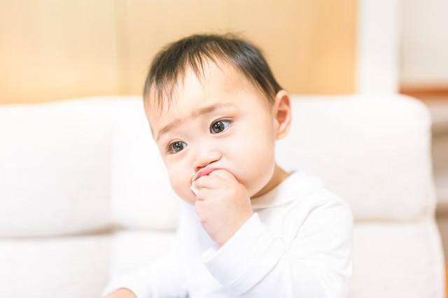 くいしんぼうの赤ちゃんの写真