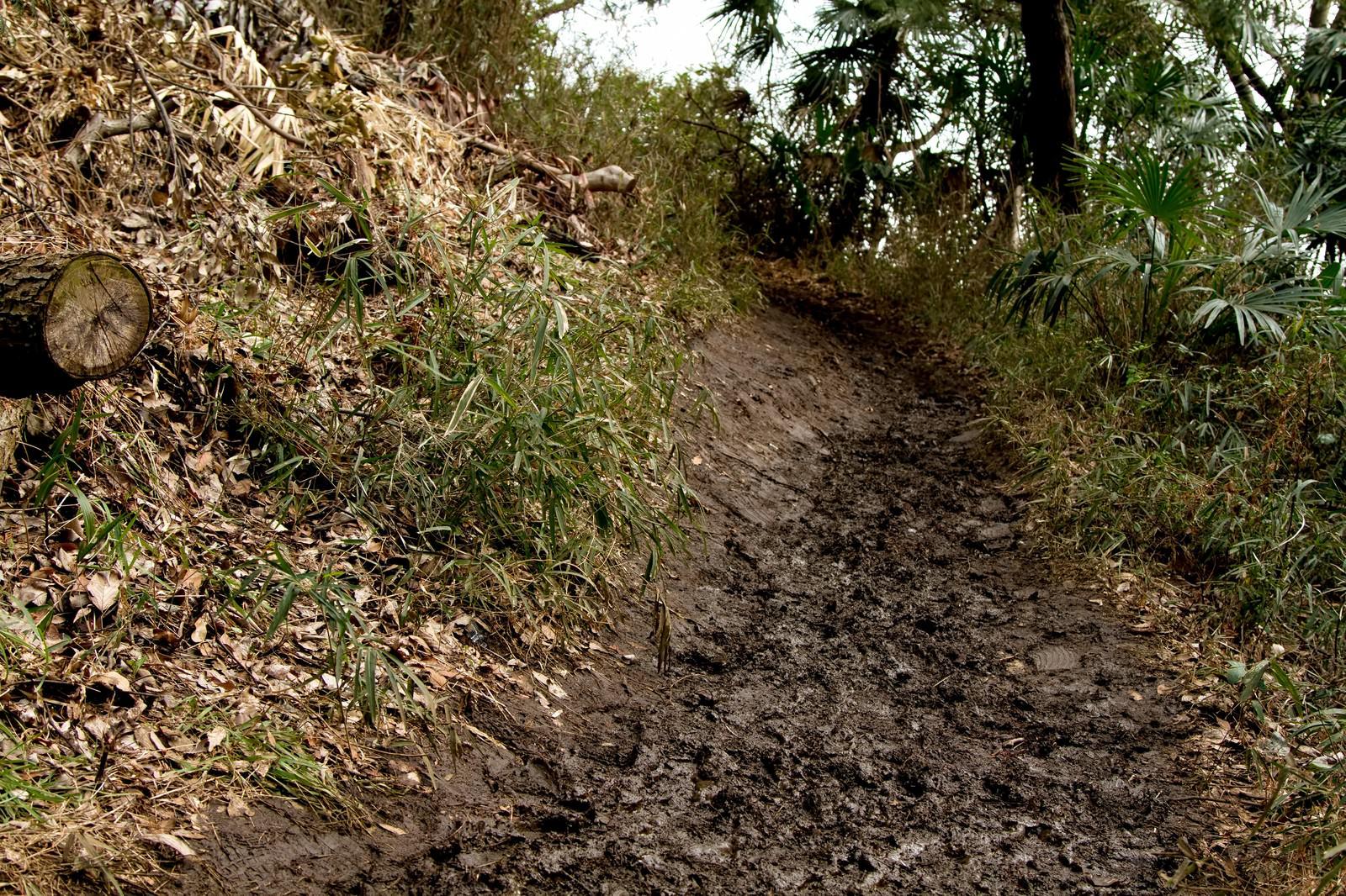 「ぬかるんだ山道」の写真
