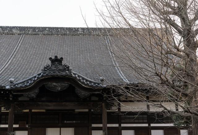 冬のお寺の写真