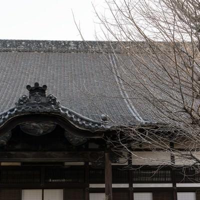 「冬のお寺」の写真素材