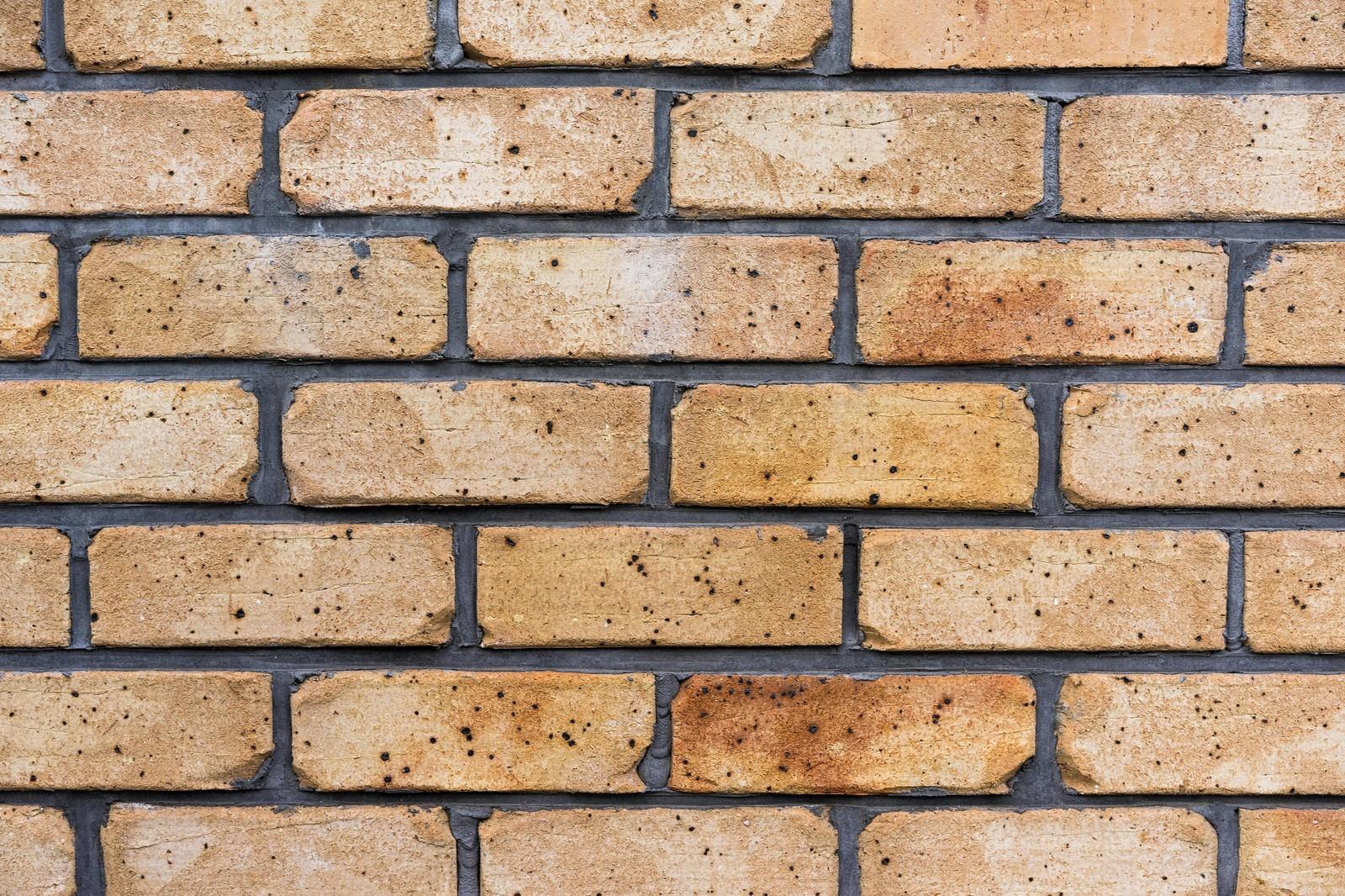 「茶色いレンガの壁(テクスチャー)」の写真