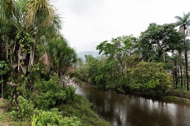 ベネズエラの川の写真