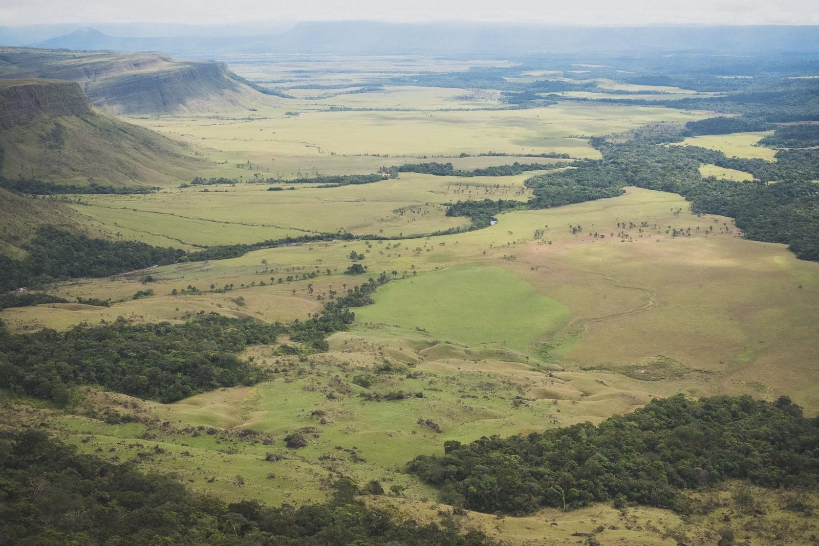 「ベネズエラのギアナ高地ベネズエラのギアナ高地」... ベネズエラのギアナ高地|ぱくたそフリー素