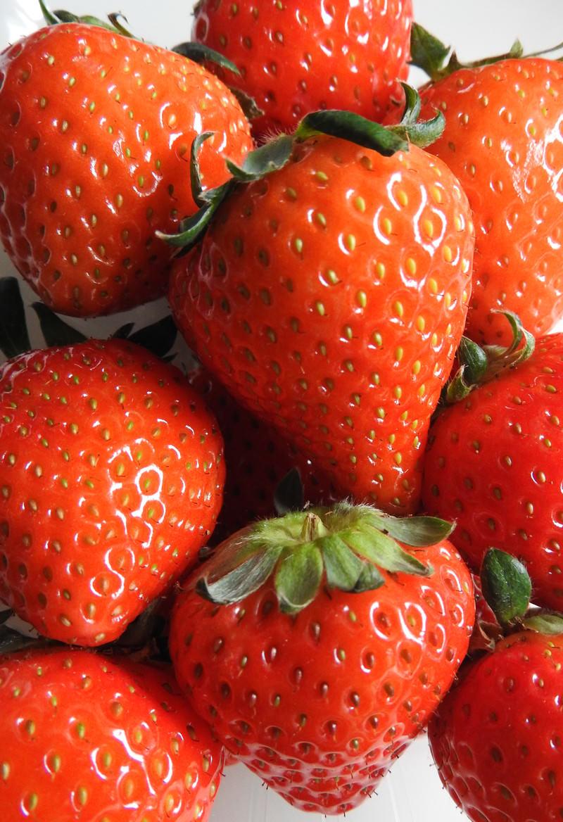 「ぎゅっとした実のイチゴ」の写真