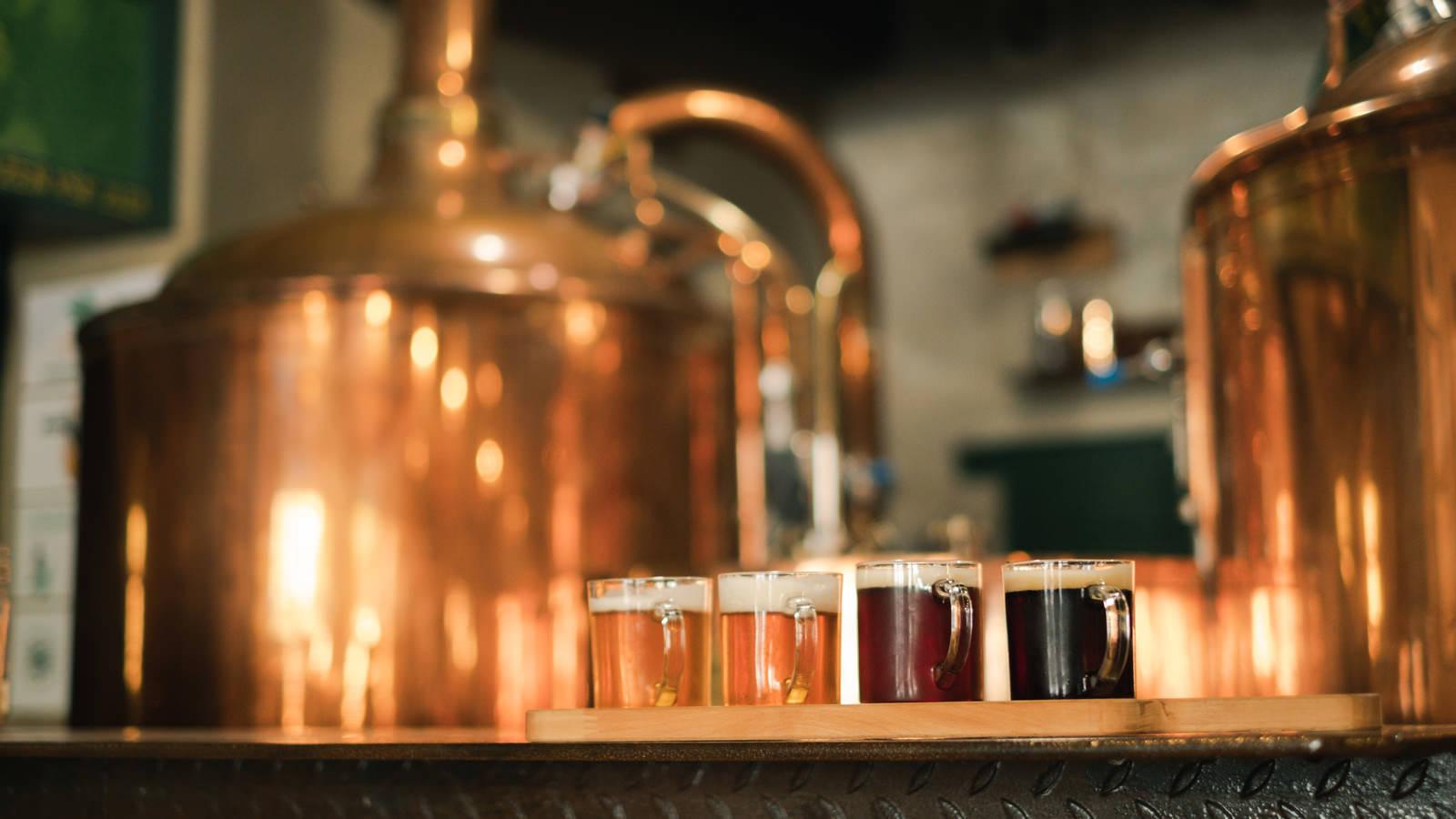 「本場チェコの色の違うビール」の写真