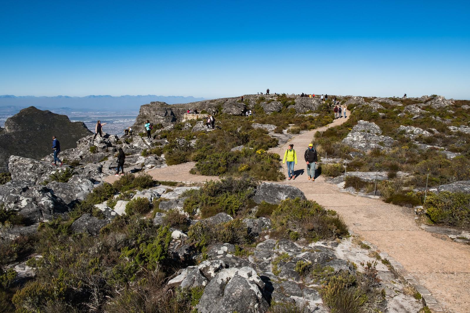 「テーブルマウンテンの遊歩道を散策する観光客(南アフリカ) | 写真の無料素材・フリー素材 - ぱくたそ」の写真