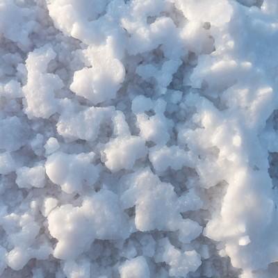 ウユニ塩湖の塩の結晶の写真