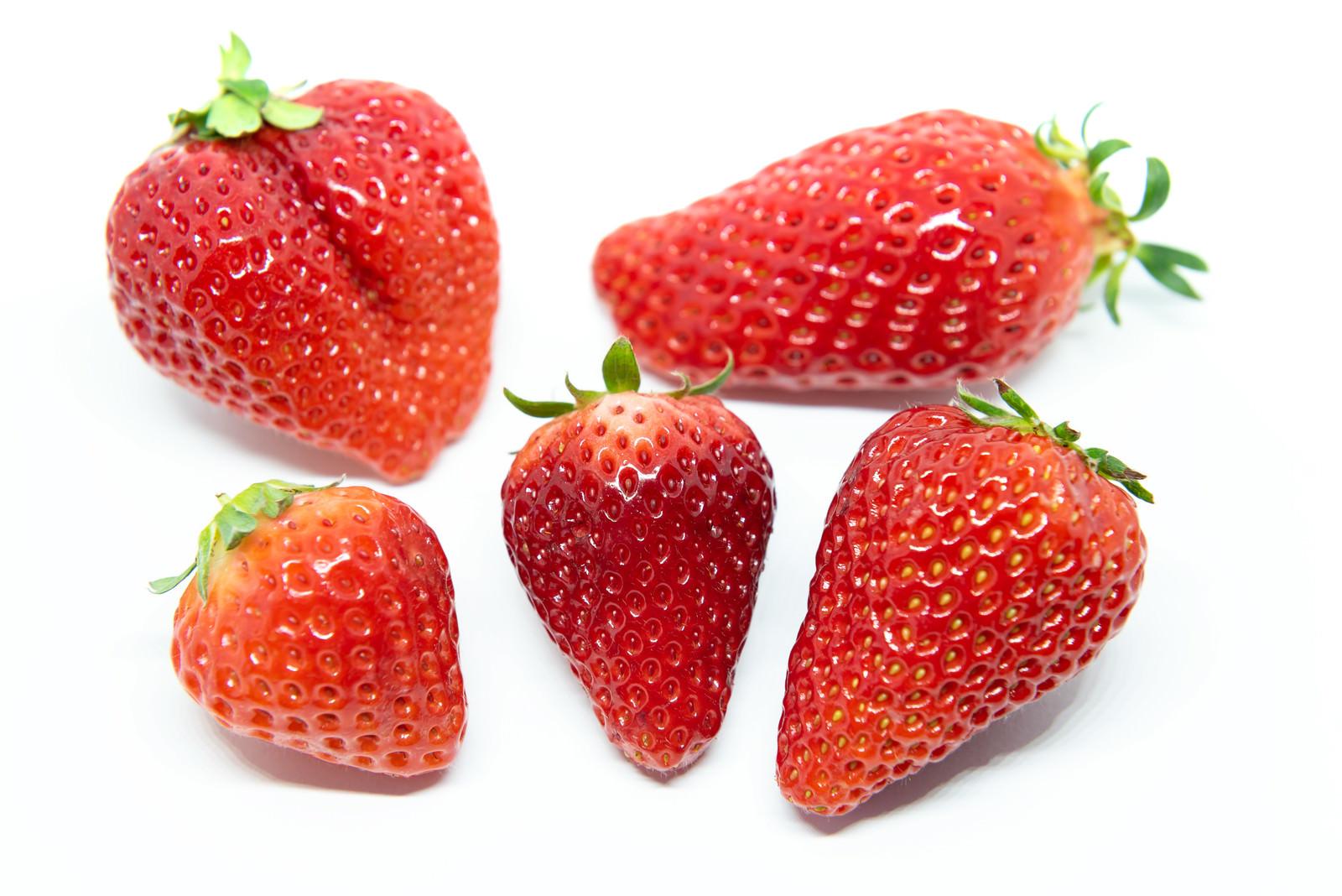 「苺比較(あまおう、章姫、さがほのか、紅ほっぺ、とちおとめ)」の写真