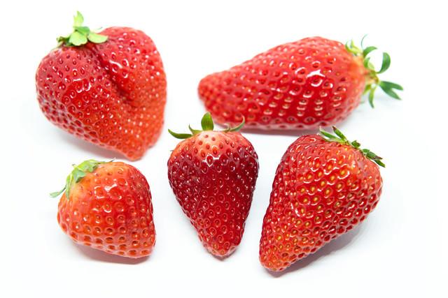 苺比較(あまおう、章姫、さがほのか、紅ほっぺ、とちおとめ)の写真