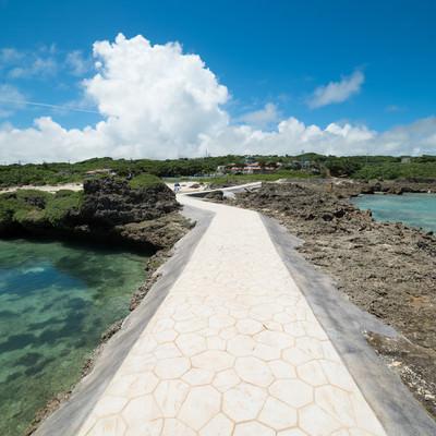 「島への一本道」の写真素材