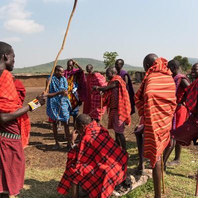 「今日はこの棒を使って作業します!(マサイ族の人々)」の写真素材