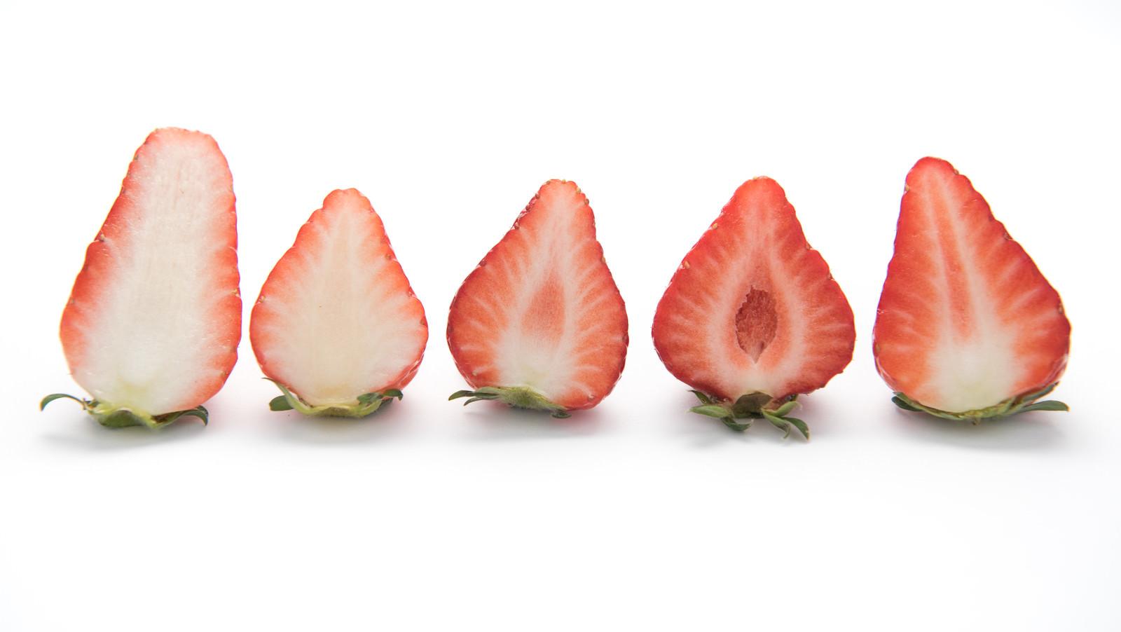 「品種が違う苺の断面」の写真