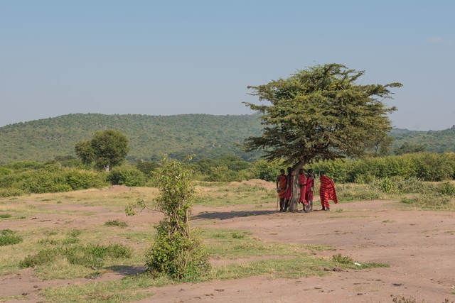 ここはグンマーではありません(マサイ族)の写真