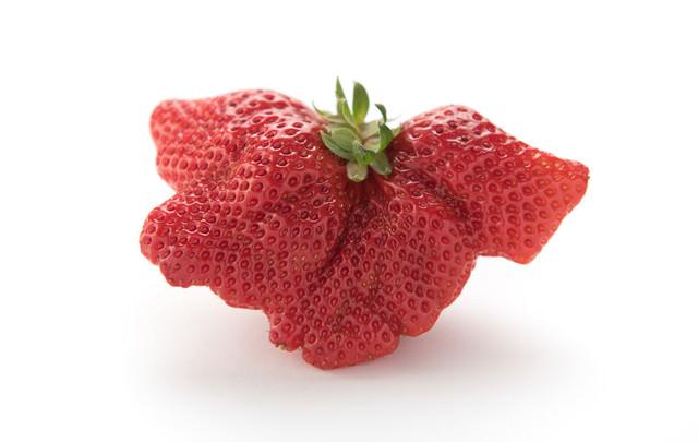 乱形果した苺の写真
