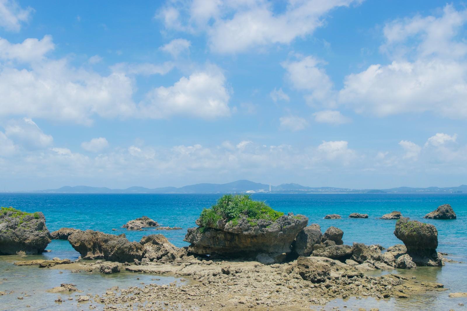 「夏の海と岩礁」の写真