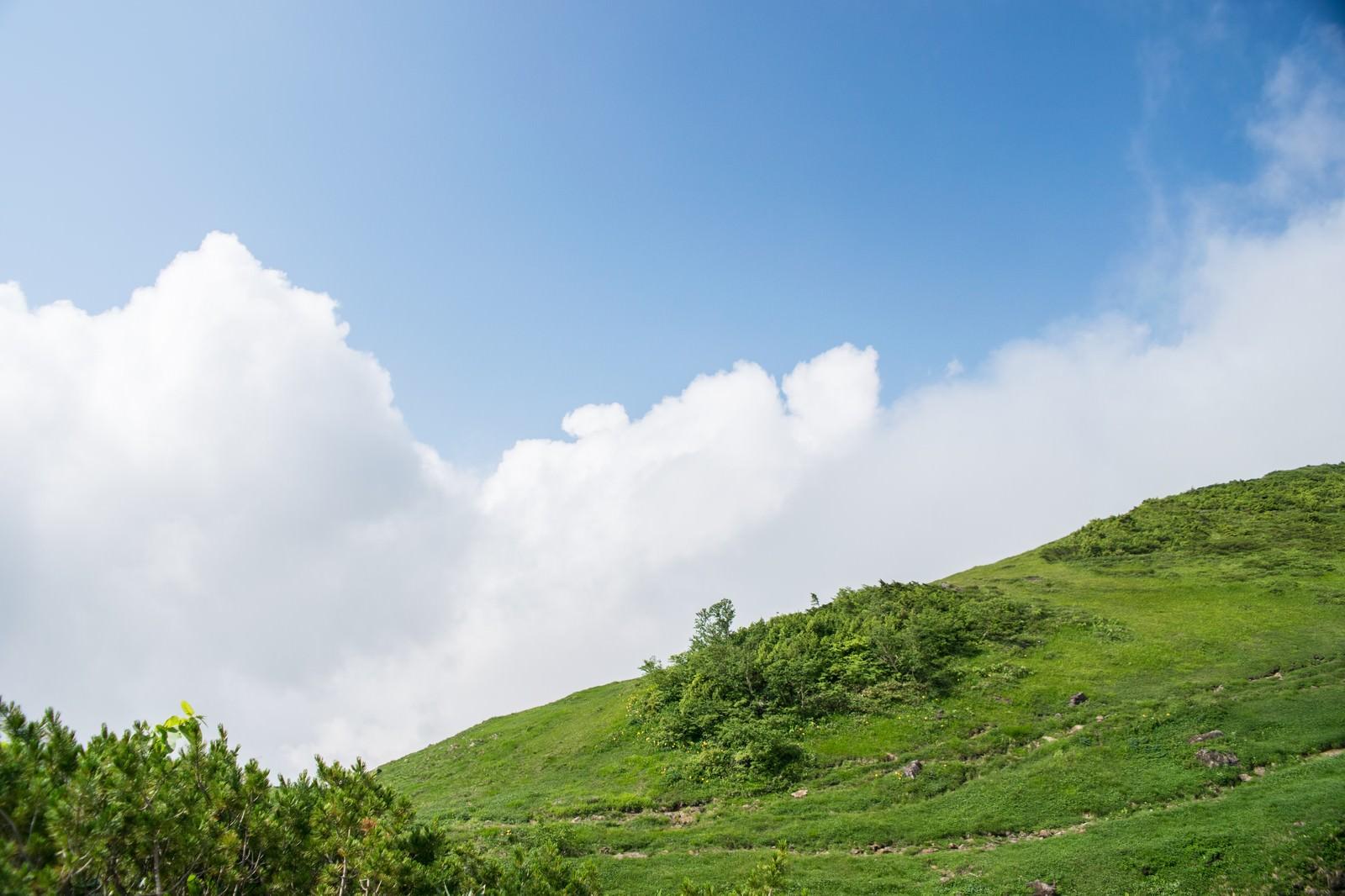 「高原から顔を出す雲」の写真