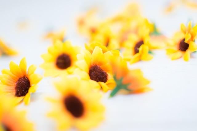床に散らばる花のブローチの写真