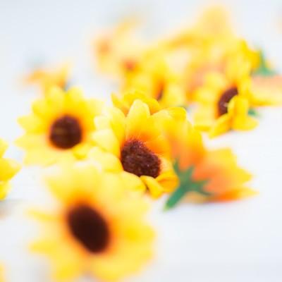 床に散らばる花のブローチのフリー素材