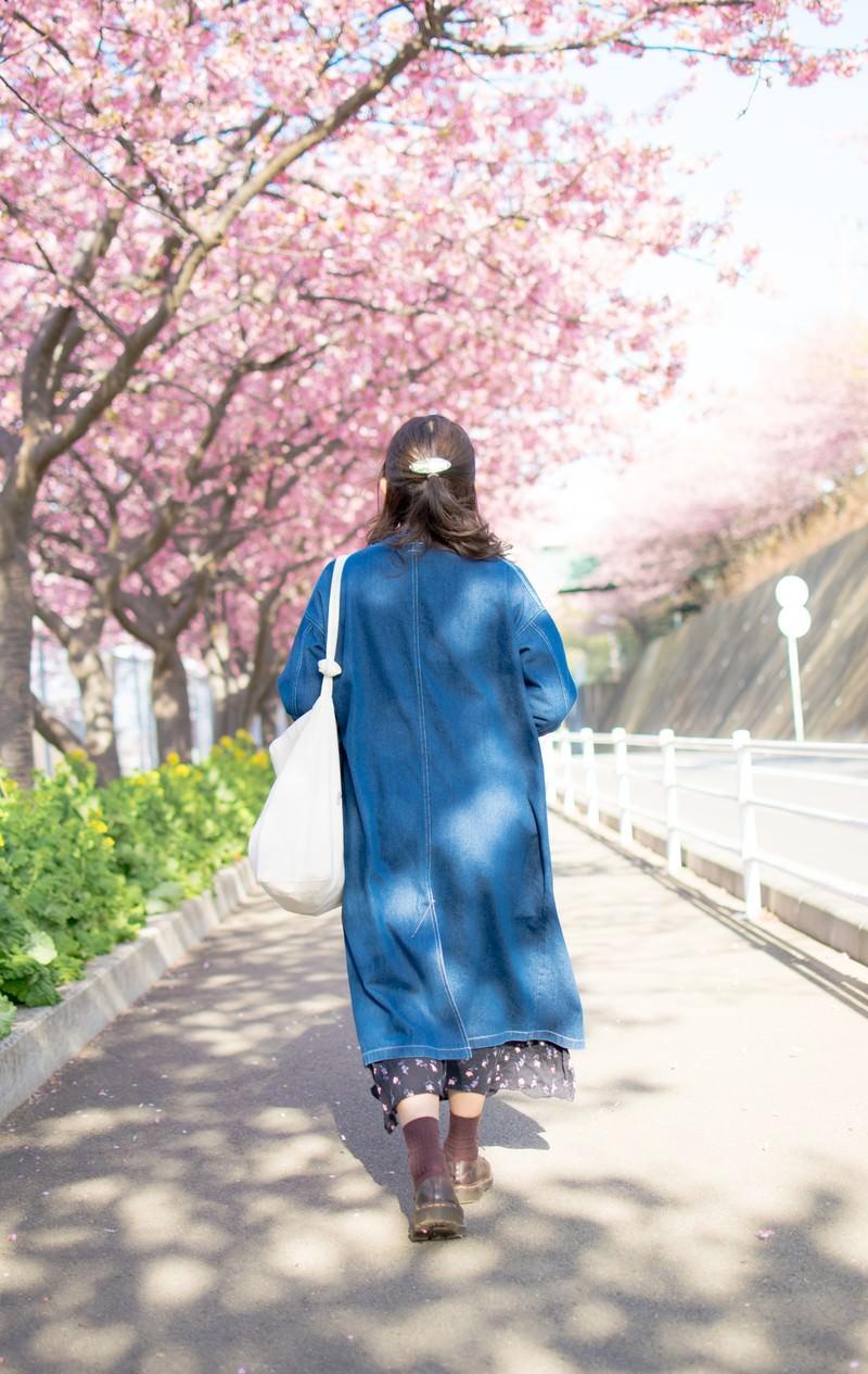 「桜の道を歩く女性の後姿」の写真