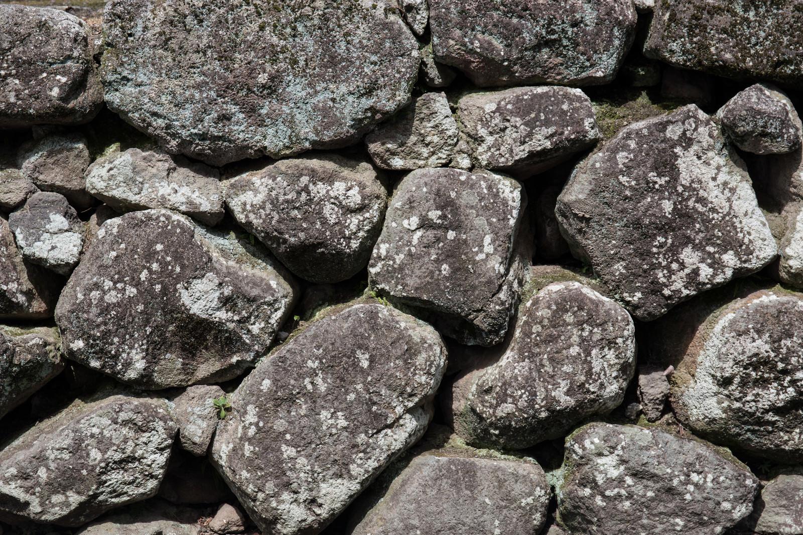「ごつごつ石垣」の写真