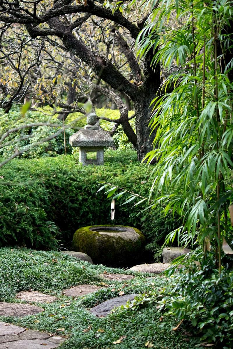 「和風のお庭」の写真