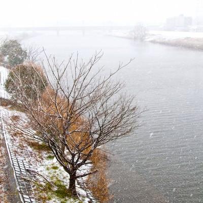 「雪と河川敷の様子」の写真素材