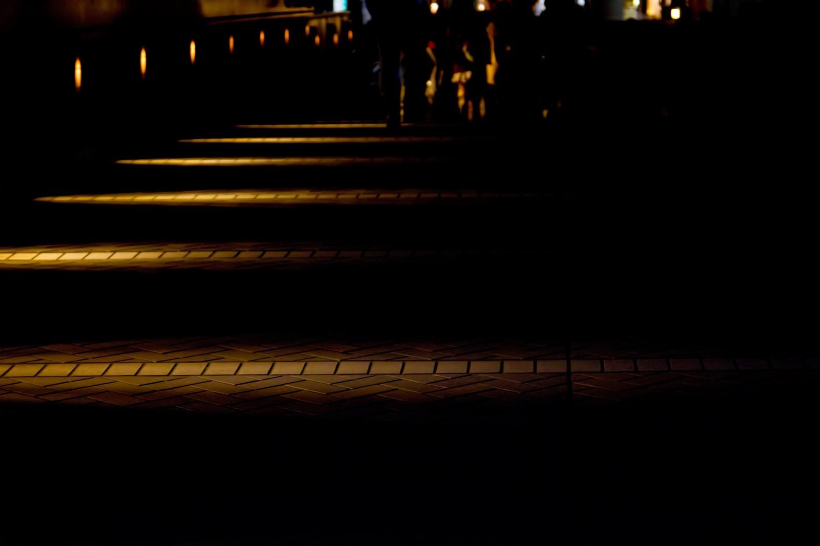 「明かりを照らす夜道」の写真