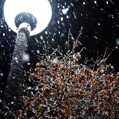 丸い街灯と雪(夜)の写真