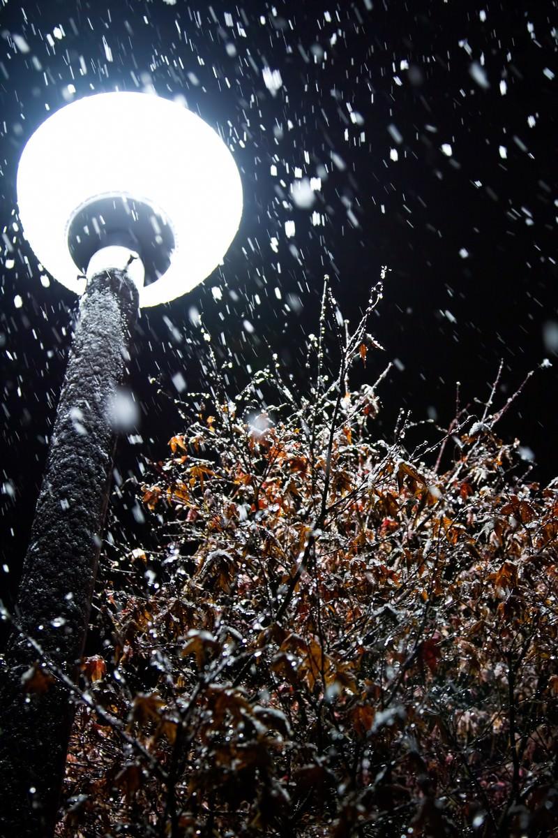 「丸い街灯と雪(夜)」の写真