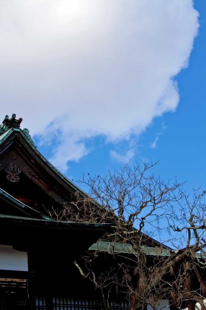 「青空と境内青空と境内」のフリー写真素材を拡大