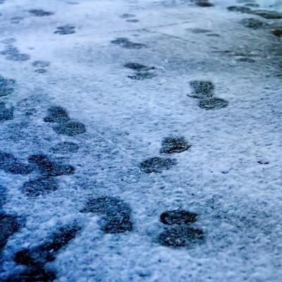 「降り始めの雪と足跡」の写真素材