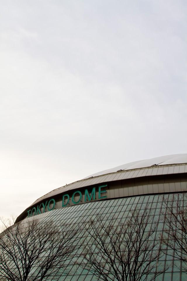 曇り空と東京ドームの写真