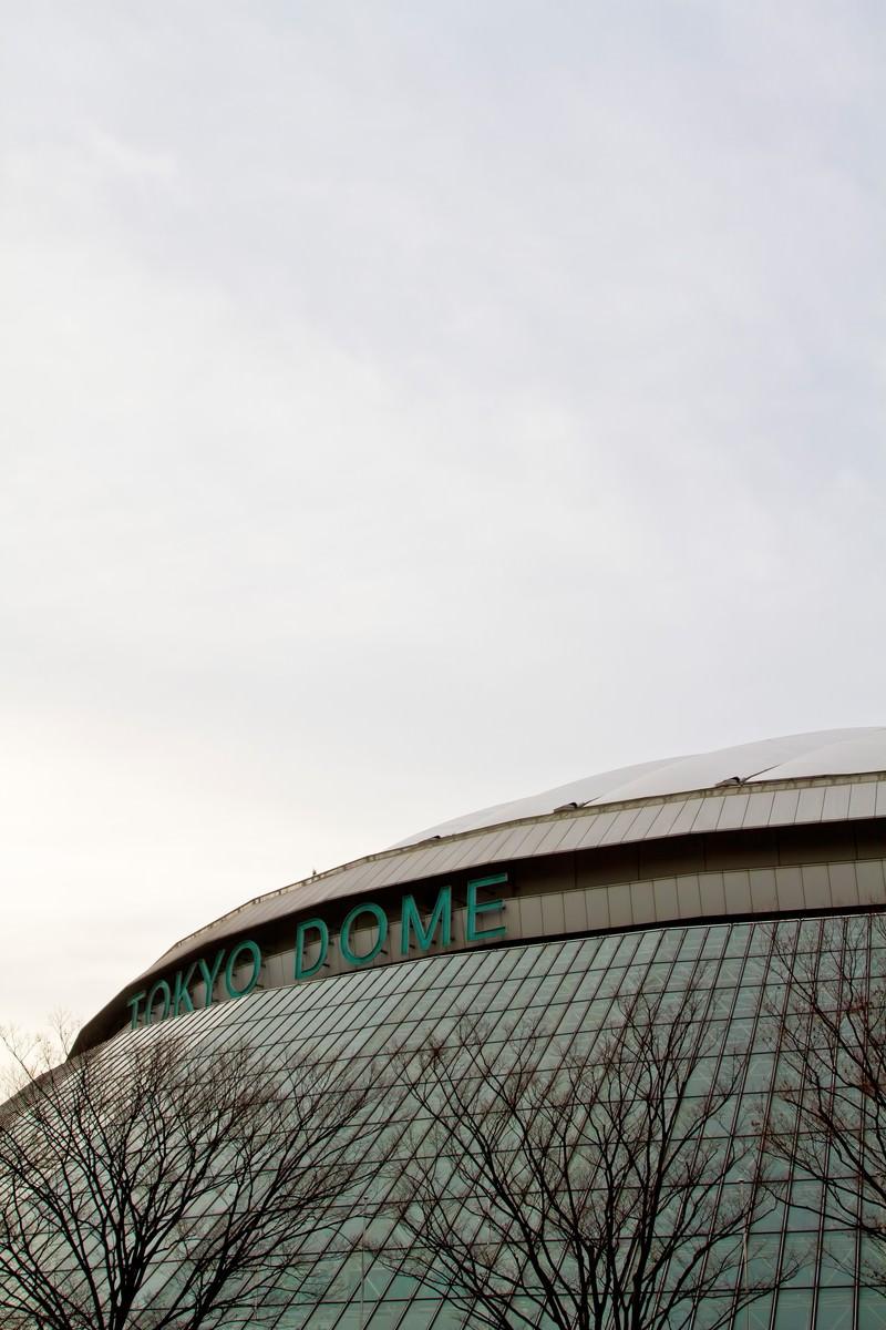 「曇り空と東京ドーム」の写真